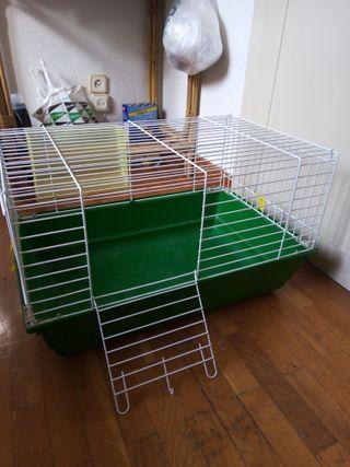 jaula conejos