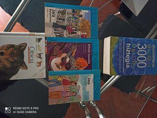 diccionario euskera español mas lote de 4 libros