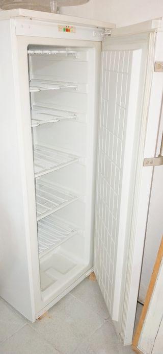 Congelador Grande Vertical