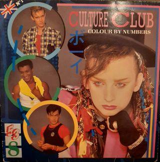 Disco Vinilo Culture Club