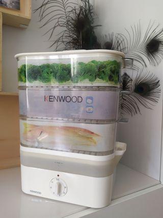 Vaporera Kenwood