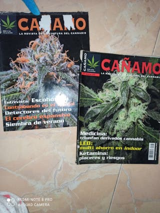 Revistas antiguas Cañamo