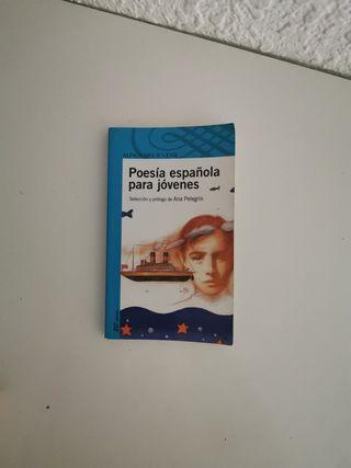 Poesía española para jóvenes españoles