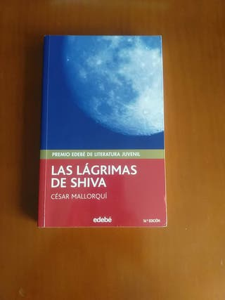 2 libros de literatura juvenil