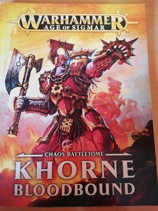 warhammer age of sigmar AOS. CAOS