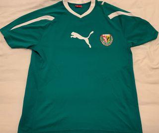 Camiseta Wroclaw talla M