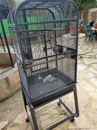 jaula para loro yaco ninfa ect