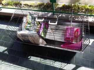 jaula mascotas