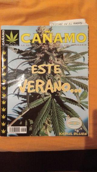revistas de colección Cañamo