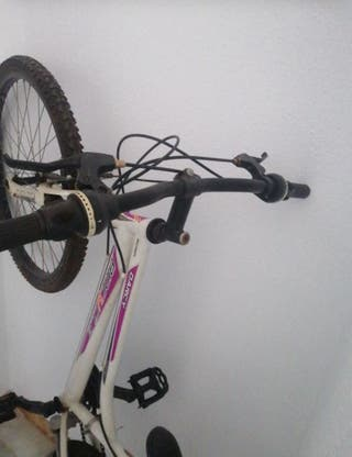 Bicicleta Biocycle Darcy 24