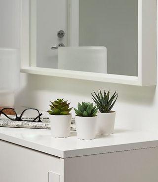 cactus Fejka Ikea