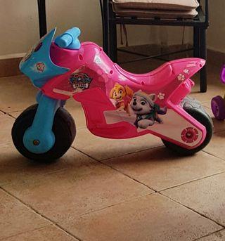 moto corre pasillo patrulla canina