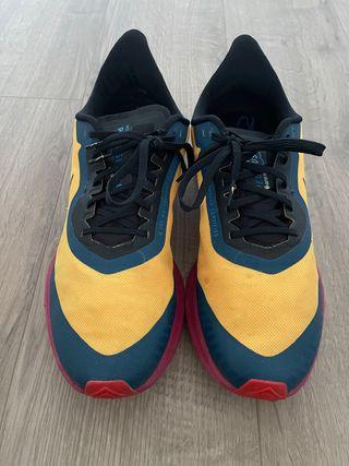 Nike trail Pegasus 36 gorotex