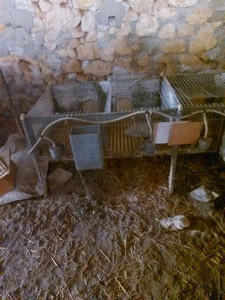 jaula de cria de conejo de 6 compartimentos