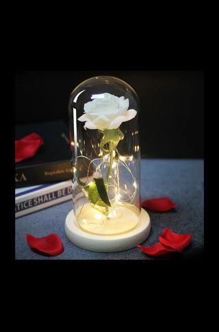 Rosas con luz