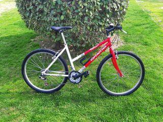 Bicicleta Top Trotter W1