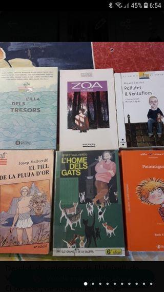 Lote de 6 libros en catalán.