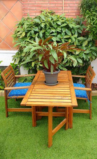 Conjunto muebles de jardín o terraza
