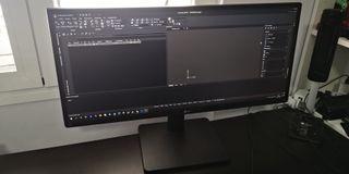 Monitor profesional LG 29UB67-B