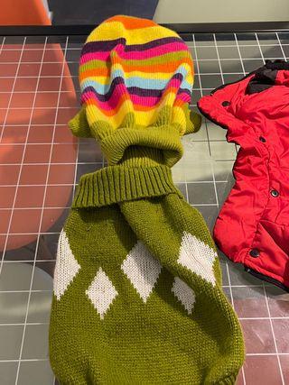 Pack ropa para perro mediano