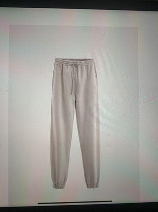 Pantalón Jogger Pantone