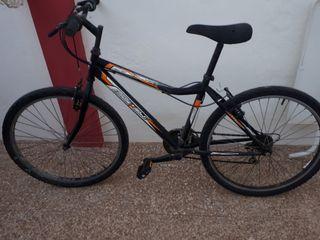 bicicleta biocicle 26