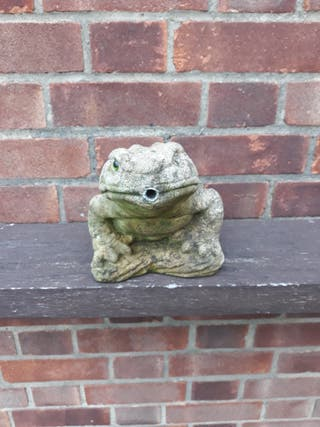 Pond toad water feature